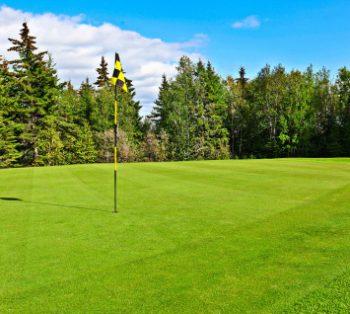 9 And 18 Hole Golf Courses Aspect Ratio 350 314