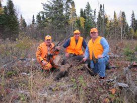 Pakwash Lake Moose Hunting
