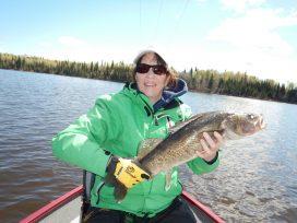 Women Holding Up Huge Walleye Caught On Pakwash Lake